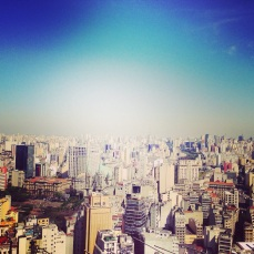 view over Sao Paulo