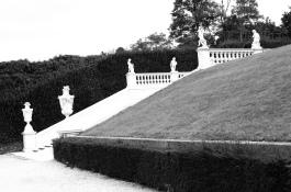 Belvedere gardens (analog)